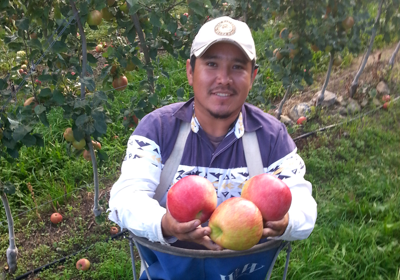 smiling migrant worker